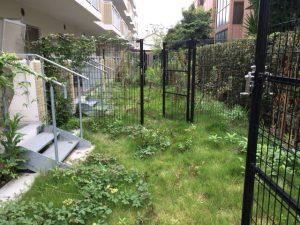 庭付きマンション草むしり