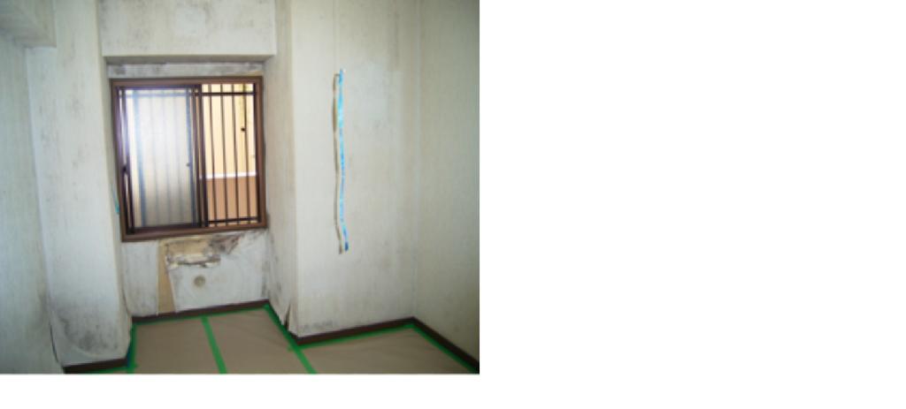 空き家管理カビ