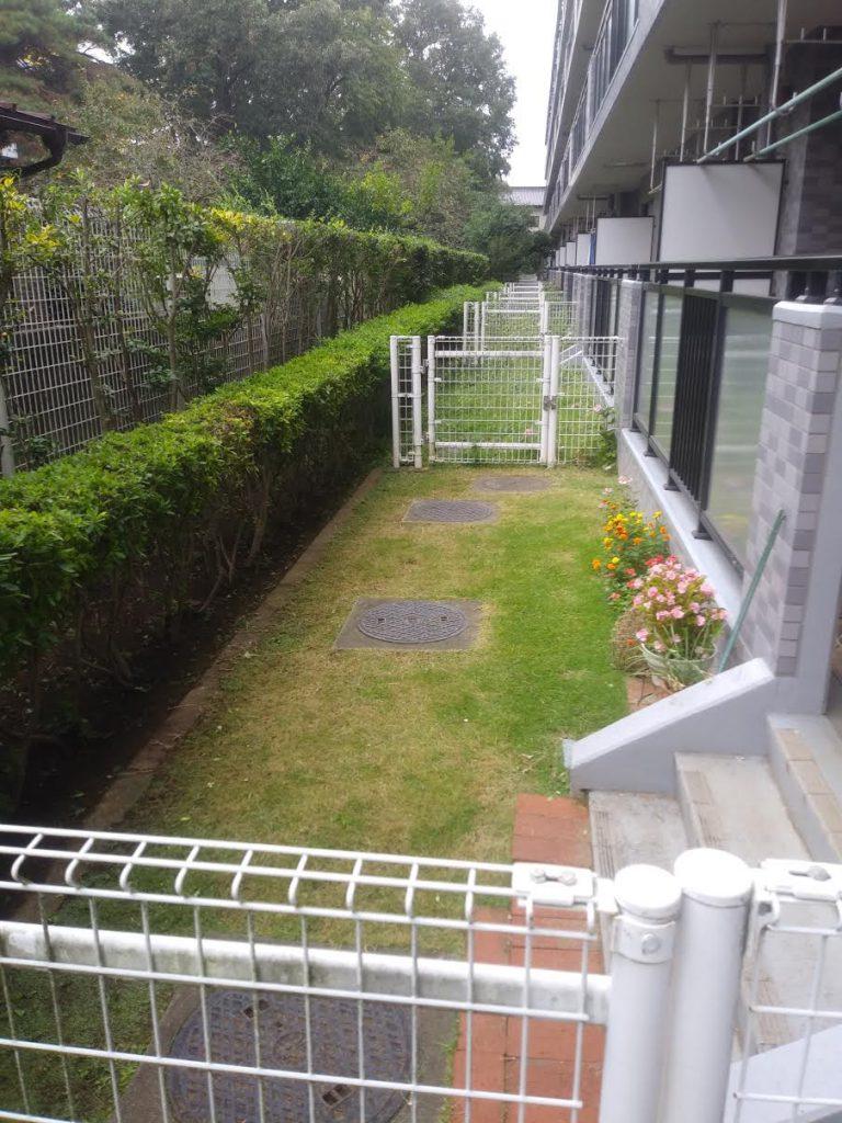 マンションの庭芝刈り